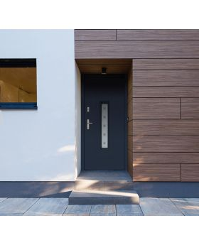 Fargo 6 - front door for sale Color: smooth anthracite; Glass type:  sand